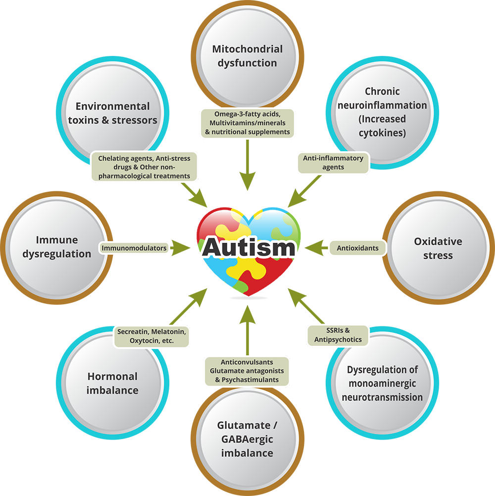 Causes of Autism Spectrum Disorder (ASD)