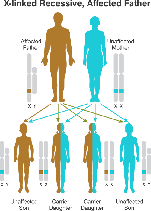 X-linked Recessive Affected Father